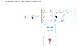 Model Hygienisch werken