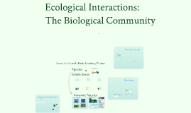 Ecological Interactions in the Biological Community