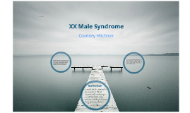 XX male syndrome by courtney mitchiner on Prezi
