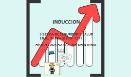 INDUCCION DEL SG-SST