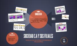 ANALISIS DE LOS ESTADOS ECONOMICOS FINANCIEROS DE SOCIEDAD S