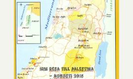 Min resa till palestina