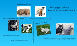 Dogs-Emma