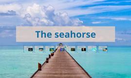 The seahorse