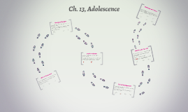 Ch. 13, Adolescence