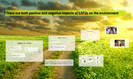 There are both positive and negative impacts of CAFOs on the