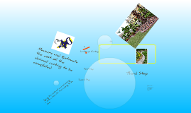 Copy of Landscape Curbing Presentation