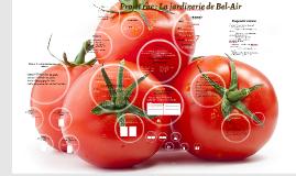 Rebecca Projet rhc : La jardinerie de Bel-Air