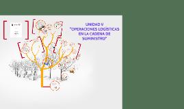 Copy of 5.1 FUNCIONALIDAD Y DEFINICIONES DE INVENTARIO.