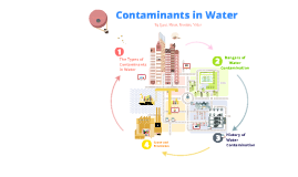 Contaminants in the Water