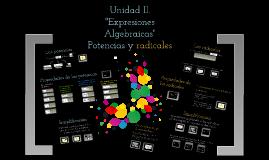 Copy of Expresiones Algebraicas:Potencias y radicales