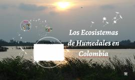 Los ecosistemas de humedales ecolombia
