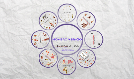 HOMBRO&BRAZO-LV'16