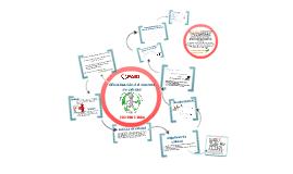Oficialización del sistema de calidad ISO 9001:2008