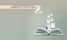 MANUAL DE FUNCIONES Y ESTRUCTURA ORGANIZACIÓNAL DE LA EMPRES