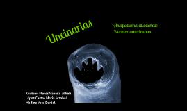 forma de tratar la gota tratamiento del acido urico con homeopatia creatinina alta en acido urico alto
