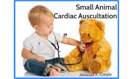 Copy of Small Animal Cardiac Auscultation