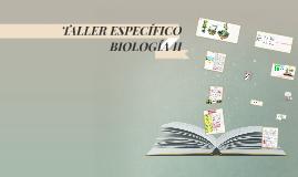 TALLER ESPECÍFICO