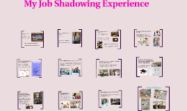 My Job Shadowing Experience