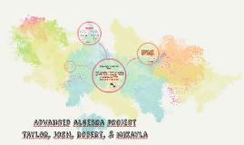 Advanced algebra project