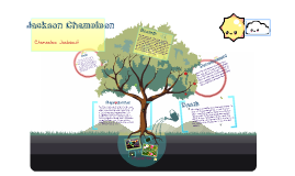 life cycle of a Jackson Chameleon