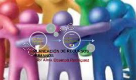La Planeación de recursos humanos es el proceso del cual un