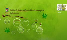 Taller de Autocultivo de Marihuana
