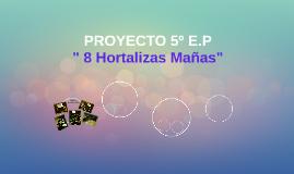 PROYECTO 5º E.P