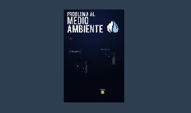 Problemas al Medio Ambiente