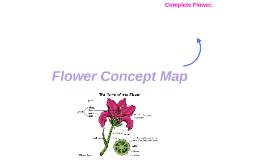 Flower Concept Map.Jen Portales On Prezi