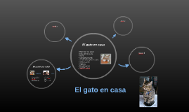 Copy of El gato en casa