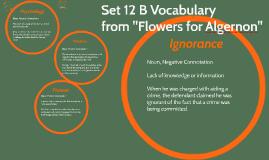 Set 12 B Vocabulary