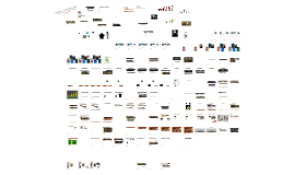 Copy of evolution complexity 1