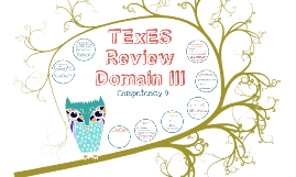 TExES Review  Domain III