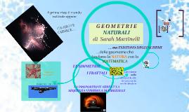GEOMETRIE NATURALI