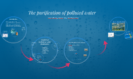 Copy of The purification of polluted water