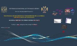 Copia de UNIVERSIDAD NACIONAL AUTÓNOMA DE MÉXICO