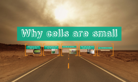 Why Cells Are So Small