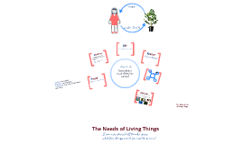 Copy of Mrs. Andreazza: Needs of Living Things