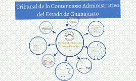 Manual de Procesos & Procedimientos