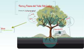 Copy of Fauna y Flora Del Valle del Cauca