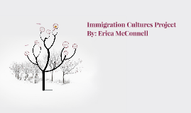 Immigration Cultures Project