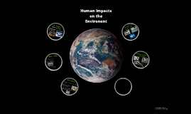 Pollution of Ecosystems