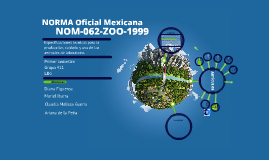 Copy of NORMA Oficial Mexicana NOM-062-ZOO-1999, Especificaciones té
