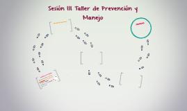 Sesión III Taller de Prevención y Manejo