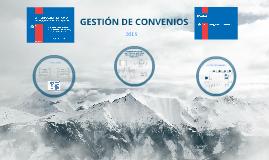 Procedimiento Convenios 2013