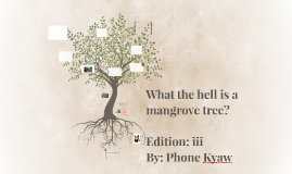 Copy of The hell is a mangrove tree?