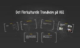 Flerkulturelle Trondheim