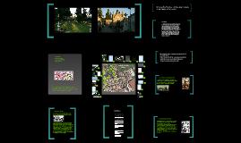 Copy of Camiñar polo cemiterio de San Mauro de Pontevedra é andar pola historia e a arte.