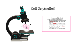 Copy of Cell Organelles